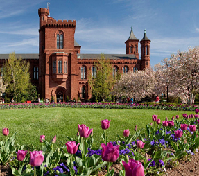 an image of the Smithsonian Haupt Garden landscape